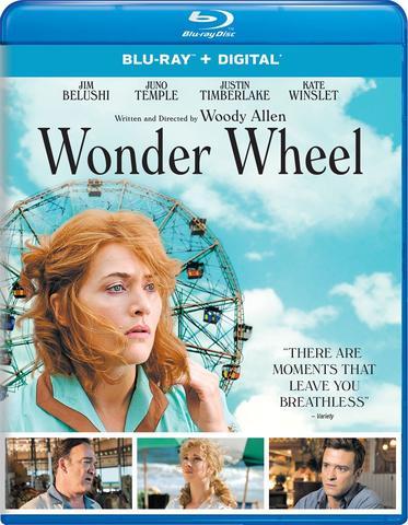 download Wonder.Wheel.GERMAN.2017.AC3.BDRip.x264-UNiVERSUM