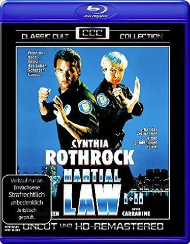 download Martial Law 2 Undercover